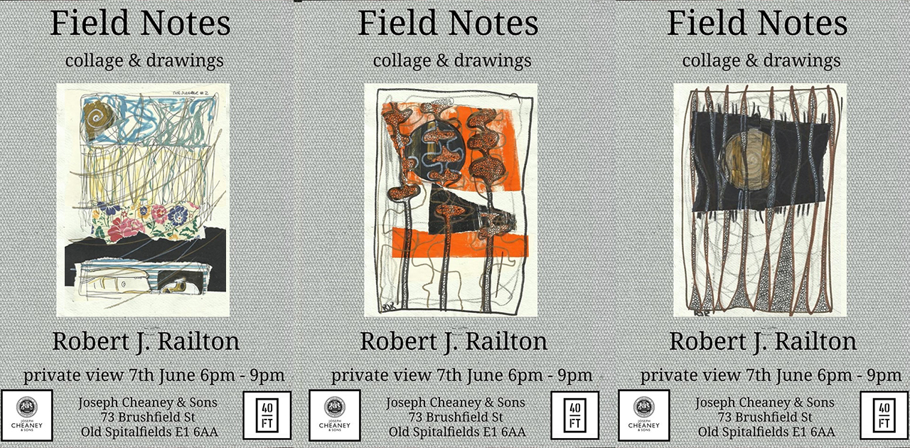 *Field Notes by Robert J. Railton – Private View June 7th